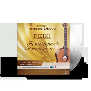 cover-dizik-1